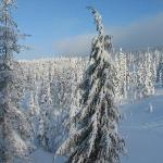 Mount Washington Dec 2010