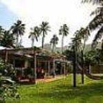 Aremango Guesthouse Thumbnail