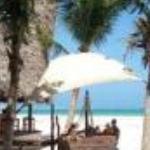 Pinewood Village Beach Resort Thumbnail