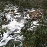 Glen Burney Trail in Blowing Rock