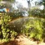 Refugio Del Sol Thumbnail