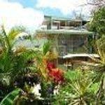 Rainforest Dreams Bed & Breakfast Thumbnail
