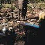 Makweti Safari Lodge Thumbnail