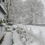 A snowy view from the B&B