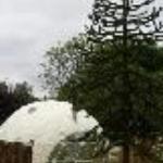 Dome Garden Thumbnail