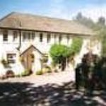 Wynford Guest House Thumbnail