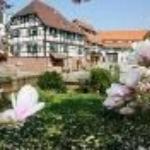 Hotel Ritter Durbach Thumbnail