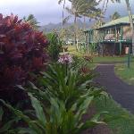 the grounds of the resort