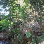 竹林公園内の小川