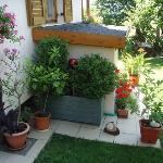 Ausschnitt vom Garten - ein Ruhepol