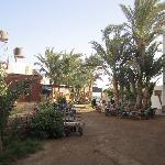 Dahab Divers - view of hotel