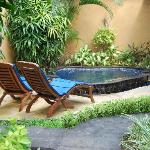 Private garden with little pool