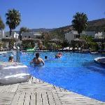 la piscine hawai