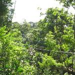 Foto de Panama Outdoor Adventures