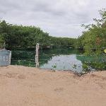nearby Cenote - not very inviting, but here it is good snorkeling
