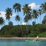 Approaching Monkey Island
