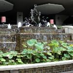 Beautiful fountain behind swimming pool.  Steps on either side lead back up to the lobby.