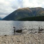 Rotoiti Lake- 5 minutes walking from Alpine Lodge