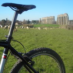 Roman ancient aqueducts and new sheeps