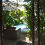 Blick vom Restaurant zum Garten