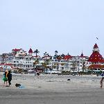 View of The Del from the beach