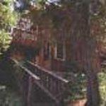A Teton Tree House Thumbnail