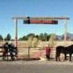 Xanadu Ranch GetAway Guest Ranch / Hybrid B&B & Horse Motel Thumbnail