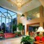 Hartford Marriott Rocky Hill Thumbnail