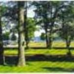 East Tawas Junction Bed and Breakfast Inn and Chickadee Guesthouse Thumbnail
