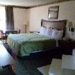 Clairmont Inn and Suites Thumbnail