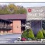 Best Western Turtle Brook Inn Thumbnail