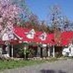 Blue Ridge Manor Bed and Breakfast Thumbnail