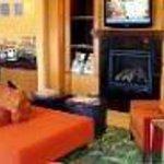 Fairfield Inn & Suites Houston I-45 North Thumbnail