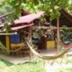 Jungle Lodge Thumbnail