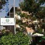 Hotel Garden Tirrenia