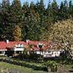 Redwood Lodge Thumbnail