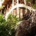 Cabanas Biuzaa' Thumbnail