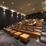 Private Theatre seating up to 25 people