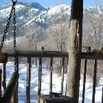 Enchantments balcony and birds