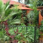 Lake View Studios garden view