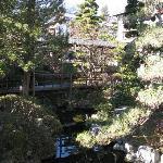 きれいに手入れされた庭と情緒のある回廊