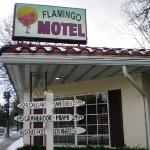 Flamingo Hotel in Winter