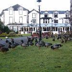 Foto de The Derwentwater Hotel
