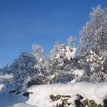 Drumguish deep snow