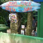 Tortilla Flats Surf and Skate