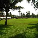 The grounds of the Park Hyatt Goa