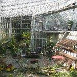 花フェスタ記念公園の温室