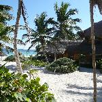 Tita Tulum view toward beach