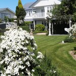 Summer time at Country Lane Homestay