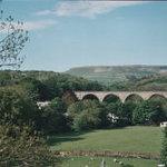 View from terrace garden